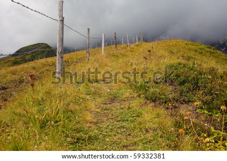 Hiking path through alpine meadows filled with wild flowers along a ridge high in the mountains with moody, low clouds moving in - stock photo