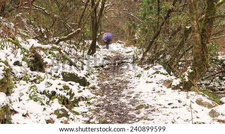hiking road with snow - stock photo
