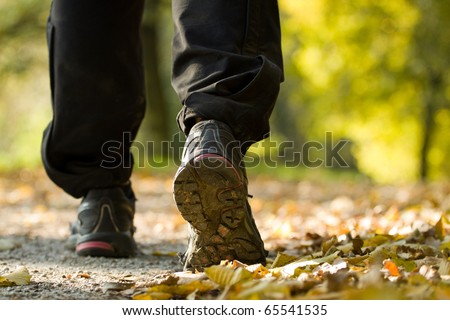 Hiking shoes on trip in autumn forest, walking legs exercising - stock photo