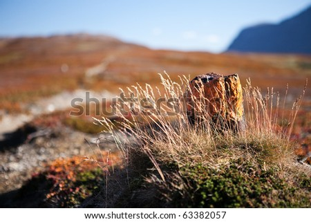 Hiking sign on the Padjelantaleden in Laponia - stock photo