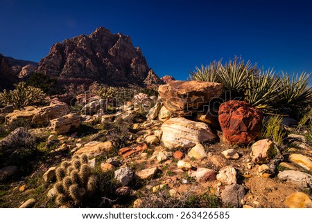 Hiking through the hot desert near Red Rock Canyon Conservation Area close to Las Vegas, Nevada.  - stock photo