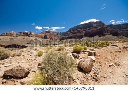 Hiking towards Grand Canyon - Plateau Point Trail - stock photo