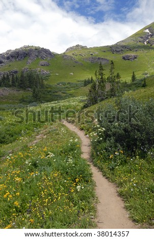 Hiking trail across a meadow in San Juan Mountains, Colorado Rockies - stock photo