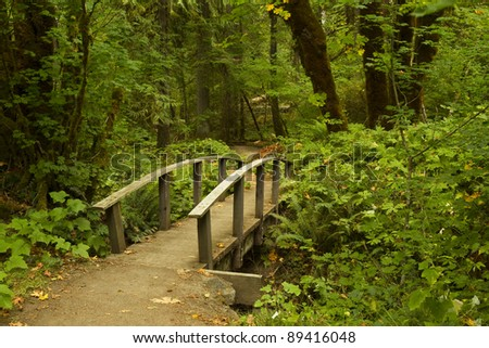 Hiking Trail Bridge