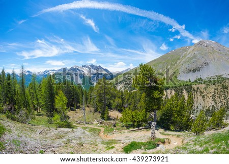 Hiking trail crossing high altitude conifer woodland with snowcapped mountain range in background and moody blue sky. Queyras Regional Parc, Col d'Izoard (2,360 m), French Alps. Fisheye distortion. - stock photo