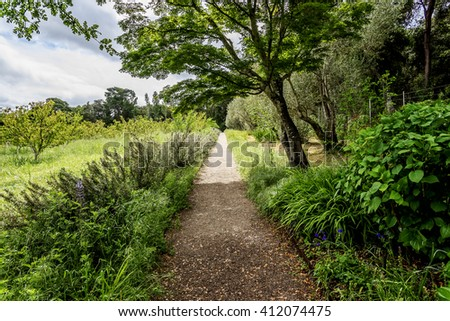Hiking trail / footpath through an orchard garden, with lush green vegetation & shade trees, perfect for resting & picnicking.  - stock photo