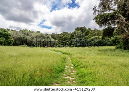 Hiking trail / footpath through an orchard garden, with lush green vegetation & shade trees, perfect for resting, picnicking, biking, & walking. - stock photo