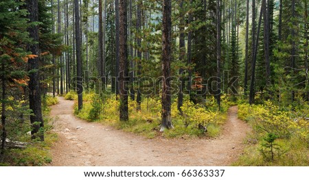 Hiking trail in Grand Teton National Park, Wyoming. - stock photo