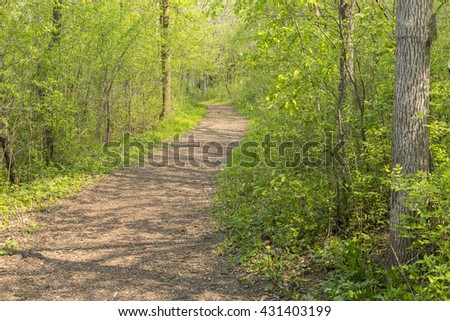 Hiking Trail In Spring - stock photo