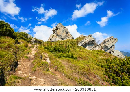 Hiking trail in the Carpathian mountains