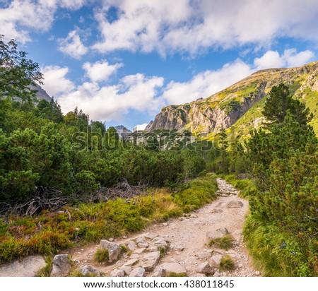 Hiking Trail in the Mountains on Sunny Day. Mlynicka Valley, High Tatra, Slovakia. - stock photo