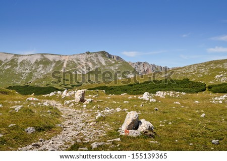 hiking trail leading up to Fischerhuette on Schneeberg, the highest mountain in Lower Austria - stock photo