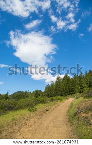 Hiking trail near Muir Woods National Monument, California - stock photo