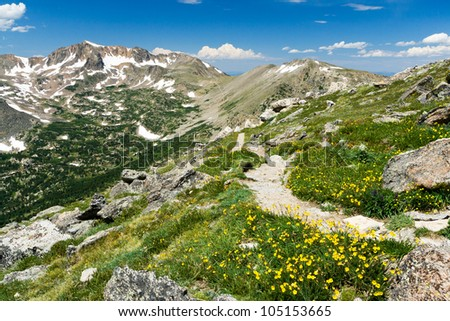 Hiking trail through a field of wildflowers in the Colorado wilderness - stock photo