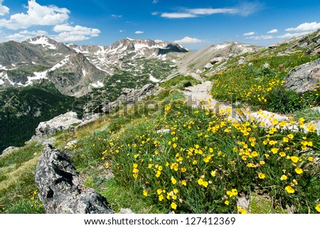 Hiking trail through field of wildflowers in the Colorado Mountains Wilderness - stock photo