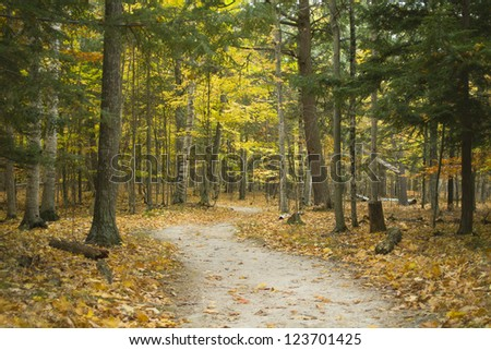Hiking trail through forest during colorful autumn season at Potawatomi State Park in Door County of Wisconsin - stock photo