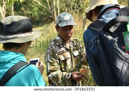 Hiking with ranger, he shows the seed from the tree and explain to the tourists  Location in Natural Park, Thailand, February ,2016
