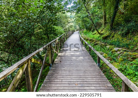 Hiking wooden passage or path through the luxurious forest near the Queimadela Dam in Fafe, Portugal - stock photo