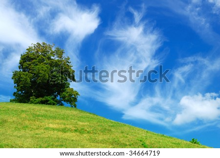 hill and tree on cloudy sky background