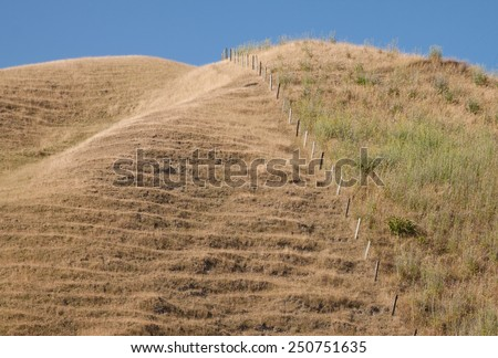 hill country pasture land in summer  - stock photo