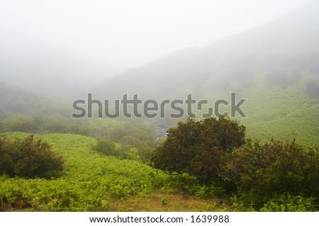 Hill landscape - stock photo