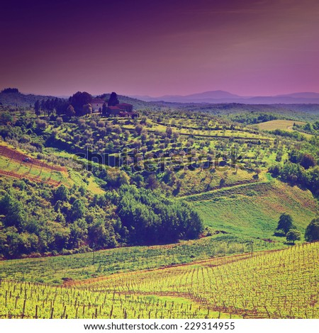 Hill of Tuscany with Vineyard in the Chianti Region, Sunrise, Instagram Effect - stock photo