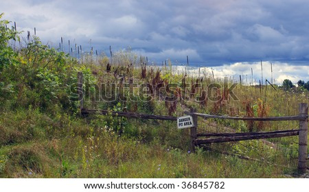 Hill of Wildflowers - stock photo