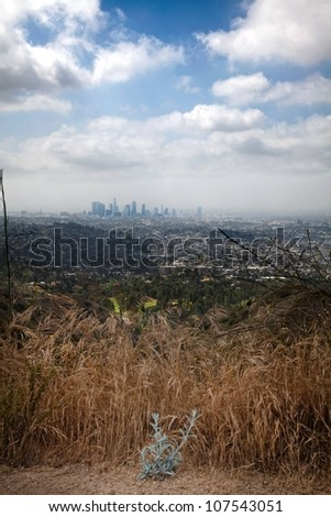 Hills above Los Angeles