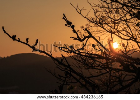 Hills and bright sky during sundown. Composition of the nature.
