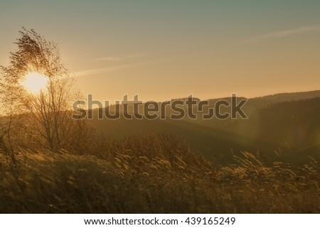Hills and forest at autumn sunrise - stock photo