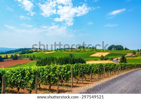 Hills covered in vineyards in the Dundee Hills in Oregon wine country - stock photo