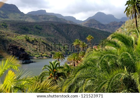 hills covered with tropical forest - stock photo