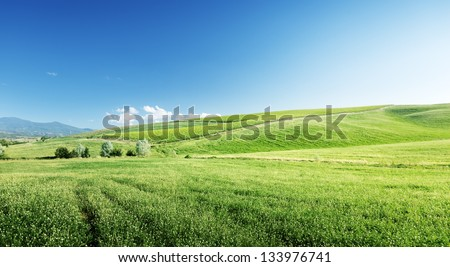 hills in sunny day Tuscany, Italy - stock photo