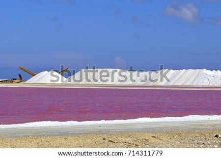 Hills of salt and pink salt plantation. Evaporation salt pan with pink water lagoon and white mountains of salt product. Salinity industrial pond.