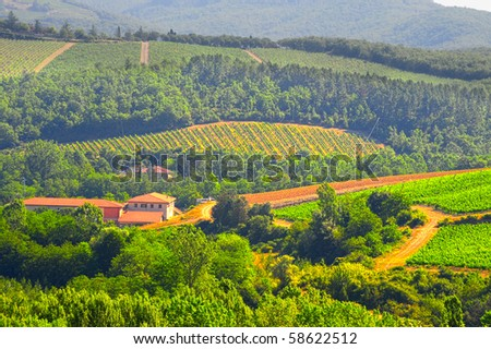 Hills Of Toscana With Vineyard In The Chianti Region - stock photo