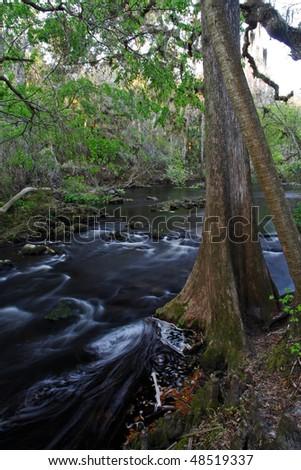 Hillsborough River State Park, Florida - stock photo