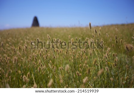 Hillside - stock photo
