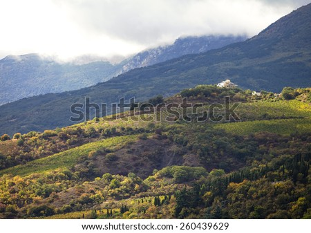 Hillside vineyards with white house in Crimea - stock photo