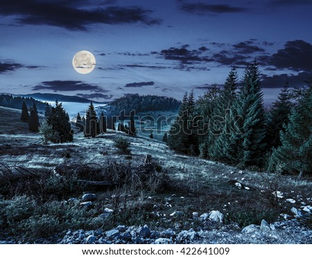 hillside with coniferous forest among the fog on a meadow in mountains of Romania at night in full moon light - stock photo