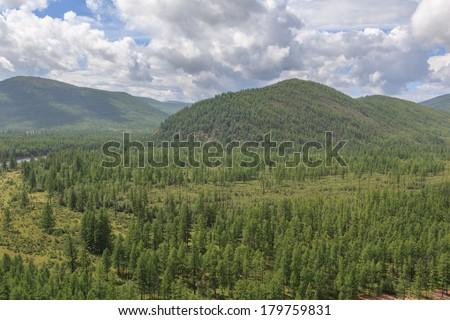Hillsides. A summer landscape. - stock photo