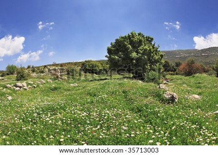 Hilly landscape. Spring at southern coast of Mediterranean sea