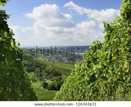 hilly landscape, Stuttgart,  foreshortening of hilly landscape with multiple vineyards the hills surrounding the important industrial town - stock photo