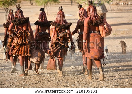 Himba women go back to the village near Opuwo town in Namibia, South Africa - stock photo