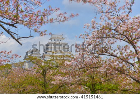 Himeji Castle and pink cherry blossom,Japan.