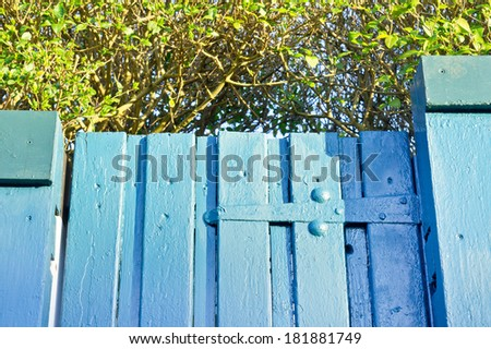 Hinge on a blue wooden garden gate - stock photo