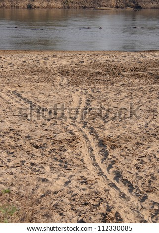 Hippo trail down to the water, South Luangwa National Park, Zambia - stock photo