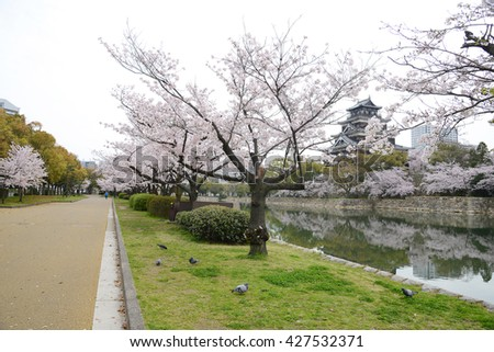 hiroshima castle with cherry blossom