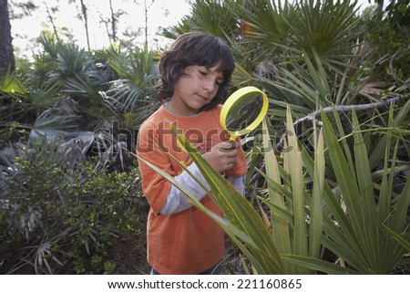 Hispanic boy looking through magnifying glass at plant - stock photo