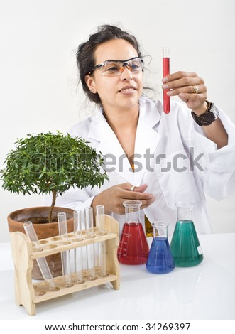hispanic woman scientist in lab with flask and small tree