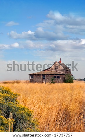 Historic abandoned farmhouse in a golden field against blue cloudy skies. - stock photo